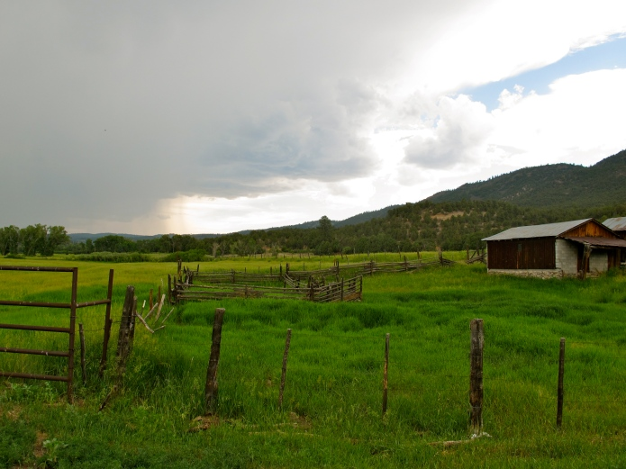 The rain was coming in as I was driving out of Vallecitos -- much needed moisture after a dry spring.