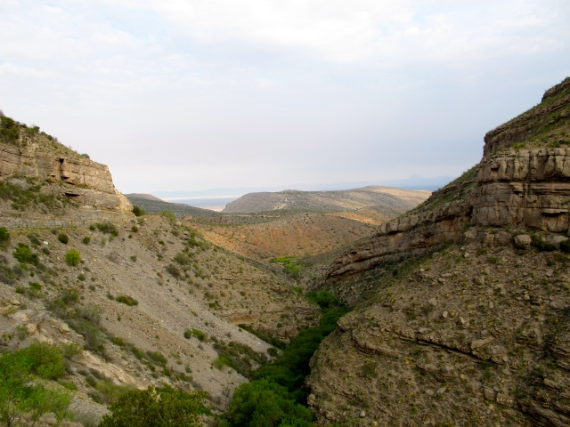 Past Alamogordo, I drove up the mountains through Croud Croft, a cool forested retreat.