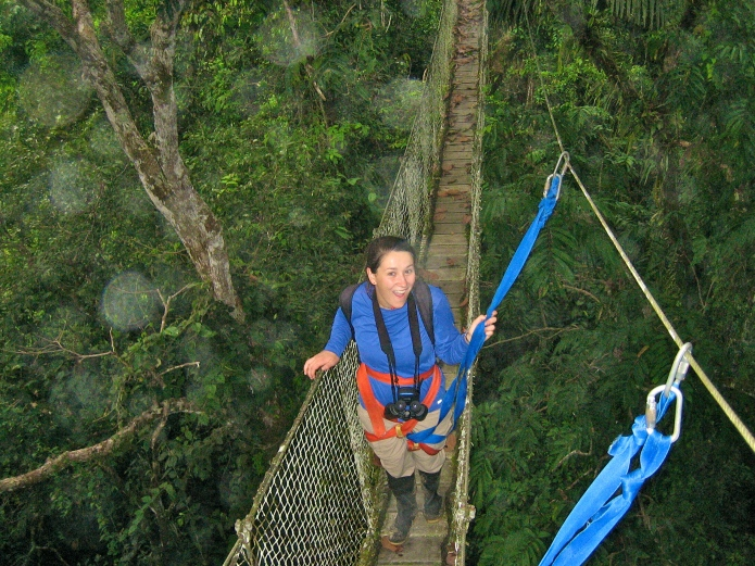 Casual rainforest canopy walk