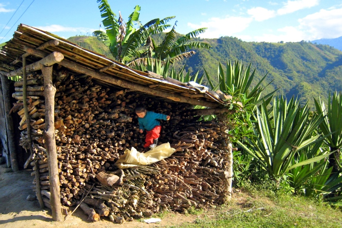 The youngest of my homestay sisters, playing on the pile of logs which served as the family's primary source of fuel for heating and cooking