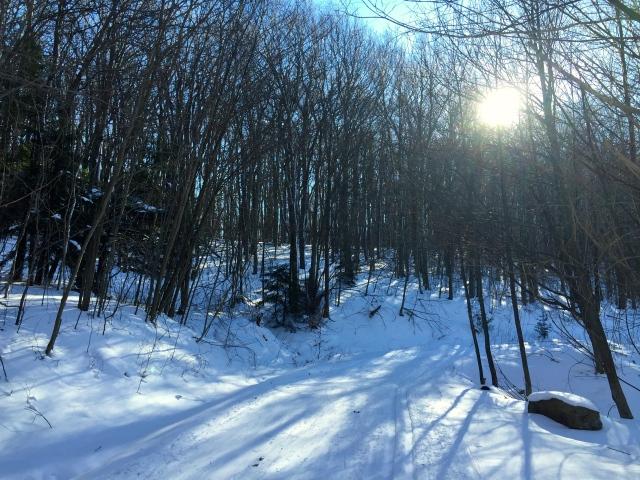 sun n snow